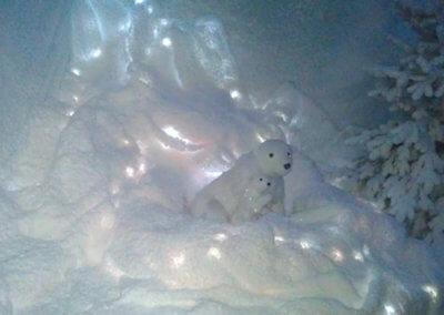 Ground Snow52