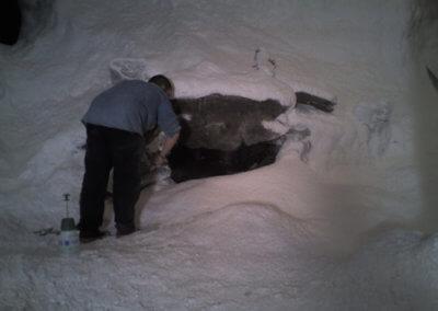 Ground Snow91