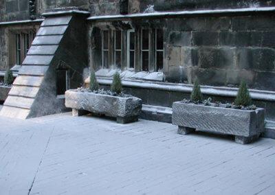 Ground Snow98